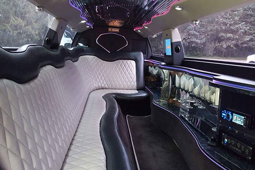 Party Limo Service
